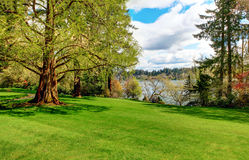 Ruhiger Landschaftsgarten, Lakewood arbeitet, wa im Garten Stockbilder