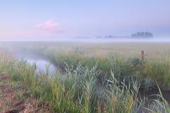 Ruhiger Morgen über Ackerland lizenzfreie stockfotos