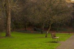 Ruhiger Platz für das Stillstehen in einem Park Stockfotografie