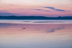 Ruhiger purpurroter Sonnenuntergang am Balaton See im Sommer Stockbild