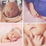 Ruhiger Schlaf eines neugeborenen Babys, eine Collage von vier Bildern stockbilder