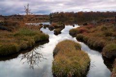 Ruhiger See Mývatn im Herbst Stockbild