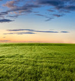 Ruhiger Sonnenuntergang Lizenzfreie Stockfotos