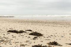 Ruhiger Strand in Normandie lizenzfreie stockbilder