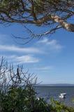 Ruhiger Tag an der Bucht Lizenzfreies Stockbild