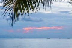 Ruhiger tropischer Sonnenuntergang auf einem Hintergrund der Palme Lizenzfreie Stockfotos