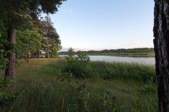 Ruhiger und ruhiger Sonnenuntergang über dem Teich Stockbilder