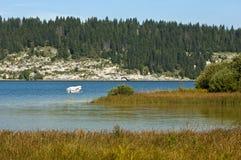 Ruhiger Waldsee Lizenzfreies Stockfoto