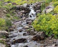 Ruhiger Wasserfall Stockfotografie