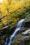 Ruhiger Wasserfall im Herbst Lizenzfreie Stockbilder