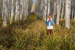 ruhiger Weg durch den Wald Lizenzfreie Stockbilder
