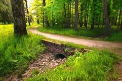 Ruhiger Weg in einem dunklen Wald im Frühjahr Lizenzfreie Stockfotos