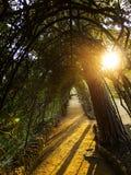 Ruhiger Weg in einem Freienpark Lizenzfreie Stockfotos