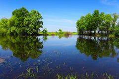 Ruhiges Flusswasser und grüne Bäume als abstraktes Gatter Lizenzfreie Stockfotos