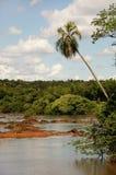 Ruhiges Iguacu stockfoto