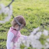 Ruhiges Kind, das auf einer grünen Wiese unter einem blühenden weißen ch spielt lizenzfreies stockbild