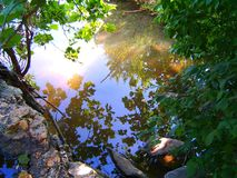 Ruhiges Wasser Stockbild