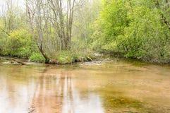 Ruhiges Wasser mit Frühlingen Stockfoto