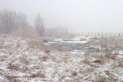 Ruhr valleiweiden tijdens sneeuwval Stock Foto's