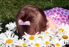 Ruik de bloemen stock afbeelding