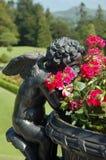Ruikende de zomerbloemen van de engel Stock Fotografie