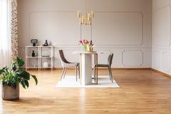 Ruim eetkamerbinnenland met een het gouden lamp, muur vormen en een installatie stock foto