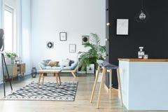 Ruime monochromatische woonkamer Royalty-vrije Stock Afbeelding