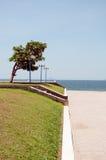 Ruime strandboulevard binnen stad met gazon en lantaarns Royalty-vrije Stock Afbeeldingen