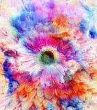 Ruimte en sterren met bloem, de achtergrond van kleurengalaxi, computercollage Royalty-vrije Stock Foto's