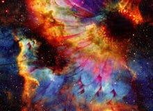 Ruimte en sterren met bloem, de achtergrond van kleurengalaxi, computercollage Stock Foto's