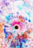 Ruimte en sterren met bloem, kleurengalaxi Stock Foto's