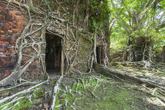 Ruin of abandoned building covered with roots on Ross Island. An Stock Photos