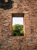 Ruin and ancient orange brick wall with a window view to the tre Royalty Free Stock Images
