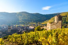 Free Ruin And Tower At Chateau De Kaysersberg -  Watchtower At Village In Alsace - France Royalty Free Stock Image - 143981386