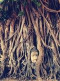 Ruin of buddha head statue in Ayudhaya Historical park Stock Photo