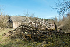 Ruin building. In the woods Royalty Free Stock Images