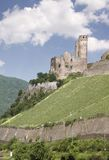 Ruin of castle Ehrenfels Royalty Free Stock Images