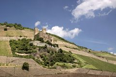 Ruin of castle Ehrenfels Royalty Free Stock Photography