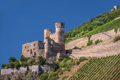Ruin of castle Ehrenfels Stock Photo