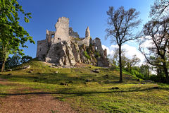 Ruin of Castle Hrusov Royalty Free Stock Photos