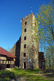 Ruin of castle Ryzmberk Royalty Free Stock Photography