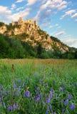 Ruin of castle Strecno - Slovakia Stock Photos
