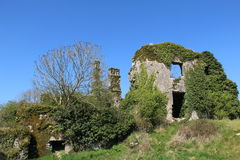 Ruin of Castlelyons Castle Stock Images