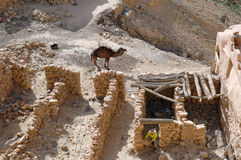 Ruin in Chenini (Tunisia). The Dahar plateau is the westernmost tip of the Atlas range. Perched on mountain-tops, the villagers have built their homes literally Stock Photo
