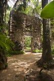 Ruin in Chichen Itza, Yucatan, Mexico stock image