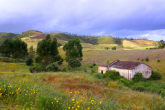 Ruin in Countryside. Landscape of colorful countryside with ruin of old house Royalty Free Stock Image