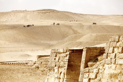Ruin and desert Royalty Free Stock Photography
