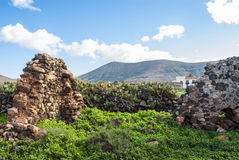 Ruin on Fuerteventura Stock Image