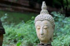 Ruin head of buddha. royalty free stock image