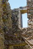 Ruin of a house. The ruin of a house surrounded by nature Stock Photography